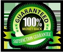 Avada Theme Customization Services